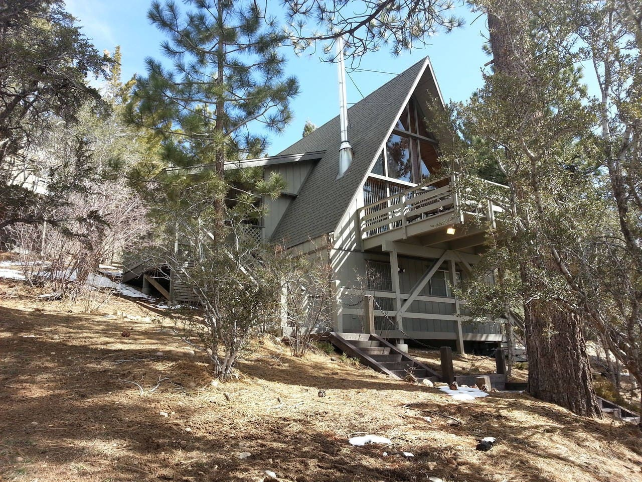 A-frame cabin nested in the pine and ironwood trees.