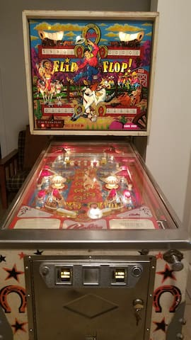 Coming soon! Pinball in optional game room.