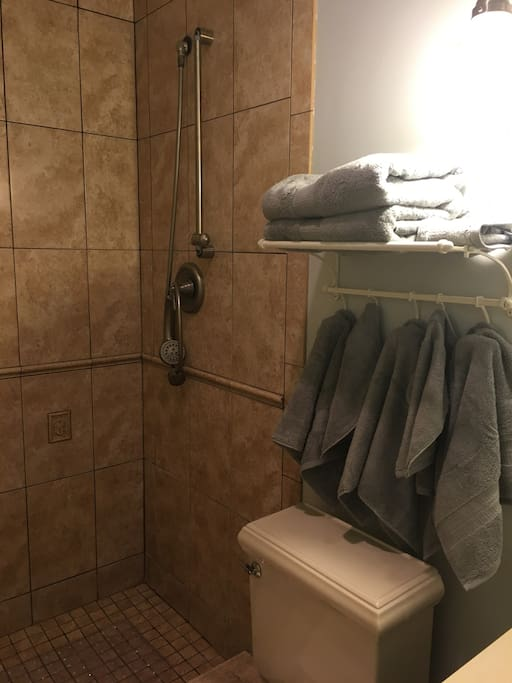 Accessible shower with hand-held