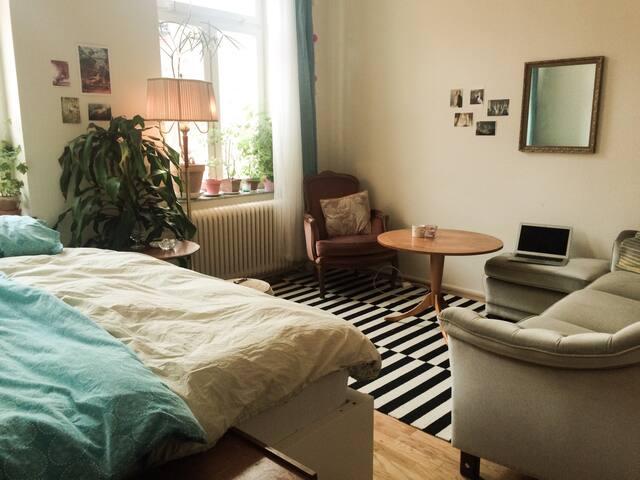 Cosy 1room apartment at Möllevången - Malmö - Wohnung