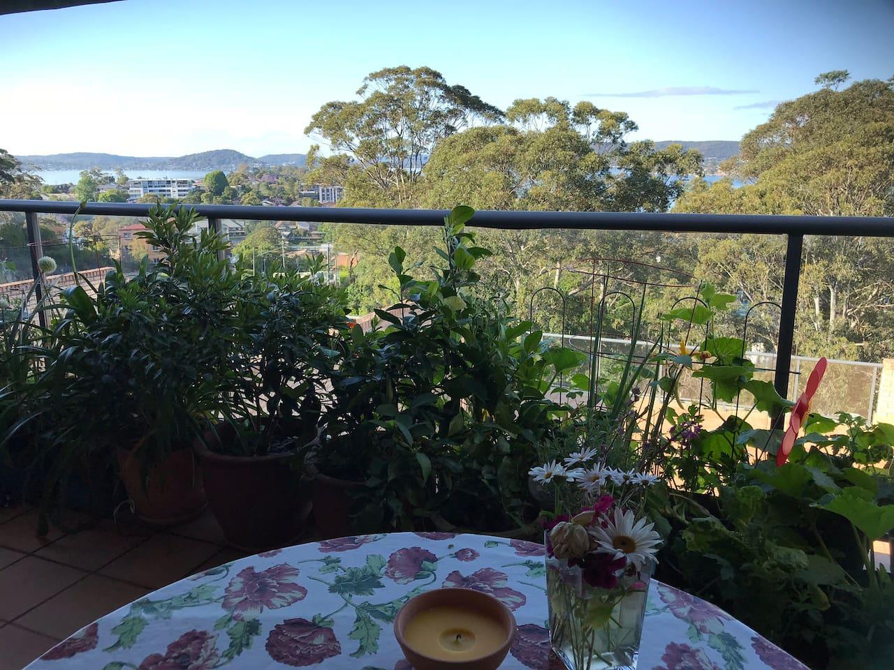 Breakfast on the verandah overlooking the views.