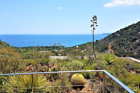 Apartment for 2 peoples at Palombaggia, pool, view