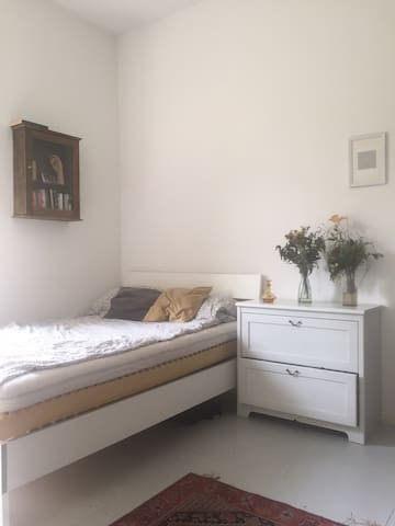 Cute student room in spacious flat (central)