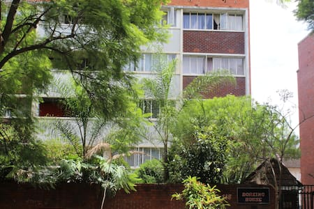A Hidden Gem in Harare's Avenues
