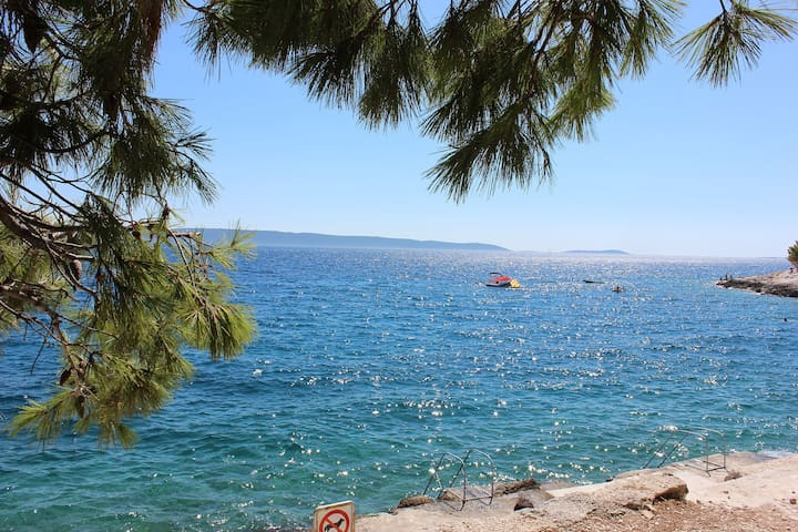 Apartman Dika*** The best places to vacation. - Okrug Gornji - Gjeste suite