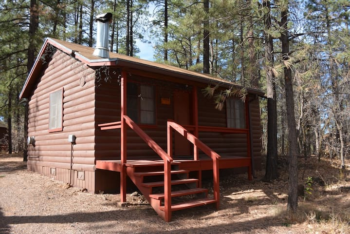 Whispering Pines Resort Cabin 1