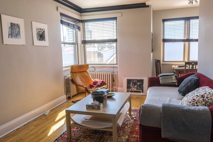 Sunny apt just steps from Downtown/Parliament - Ottawa - Apartment