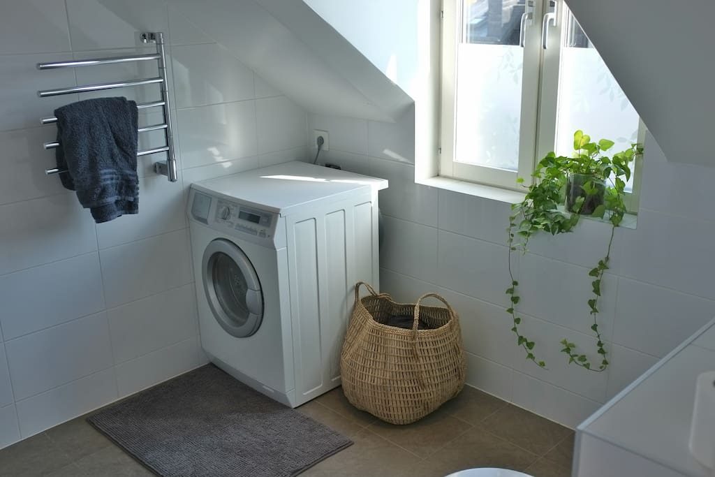 Spacious bathroom with shower and washing machine