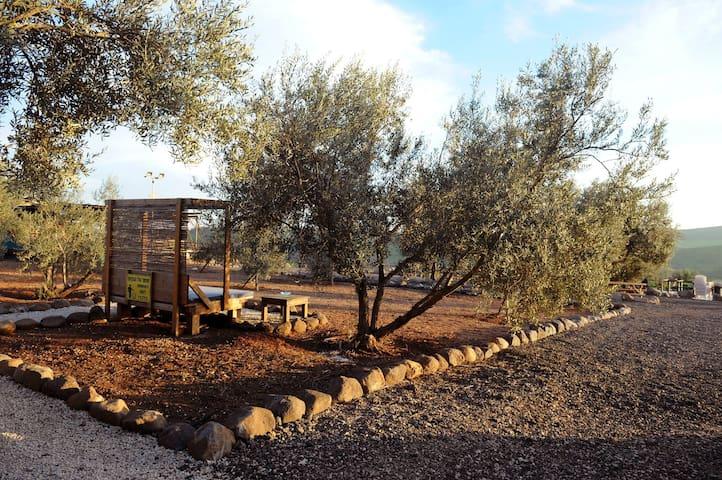 Loria's Lodge - Kfar Kisch - Houten huisje