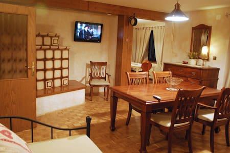 Trata 1 Ap 95 m2 - Outstanding view - Gozd Martuljek