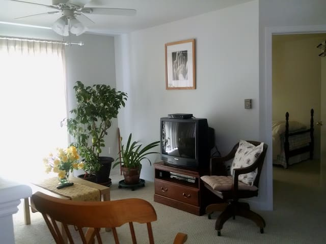 UCONN Hideaway - Tolland - Appartement
