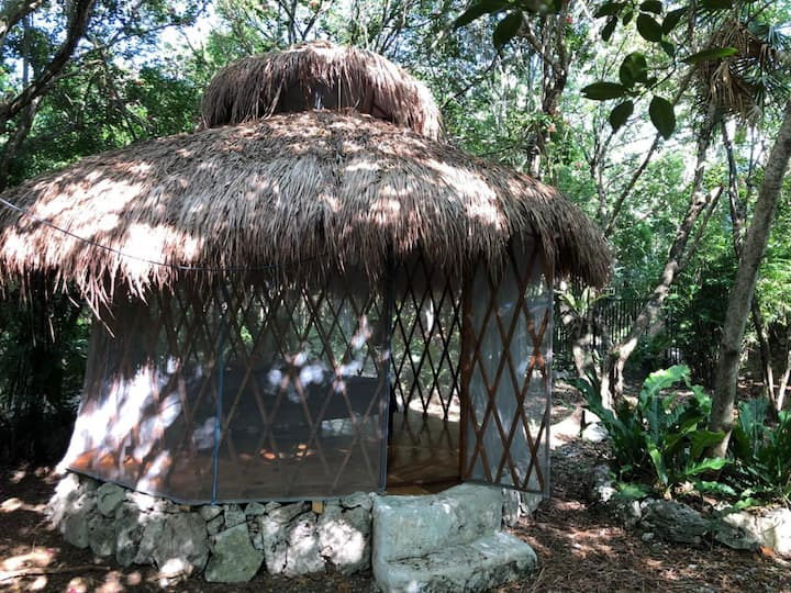 Cute Tipy-House in The Jungle