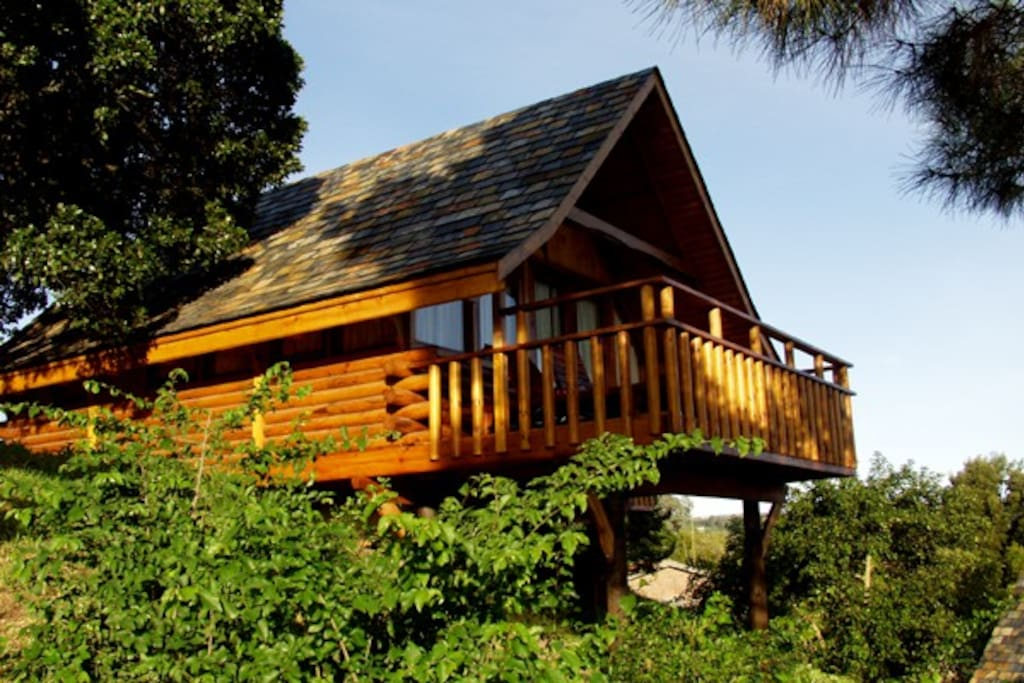 Log Cabin For 2 In Knysna Cabins For Rent In Knysna