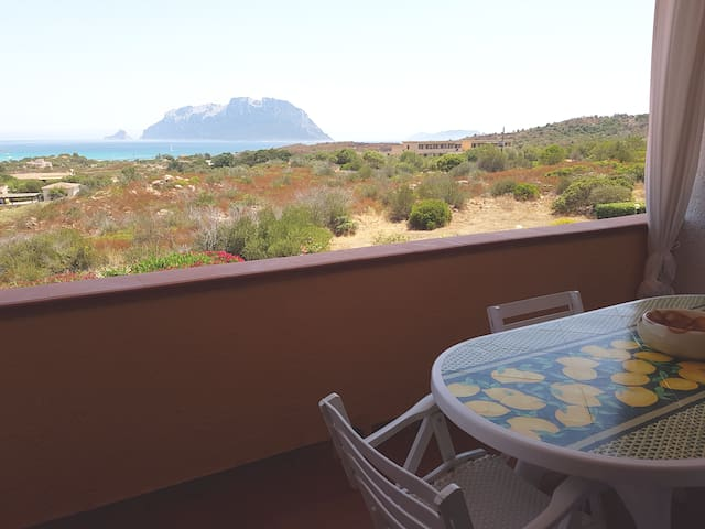 Apartment - 300 m from the beach - Olbia