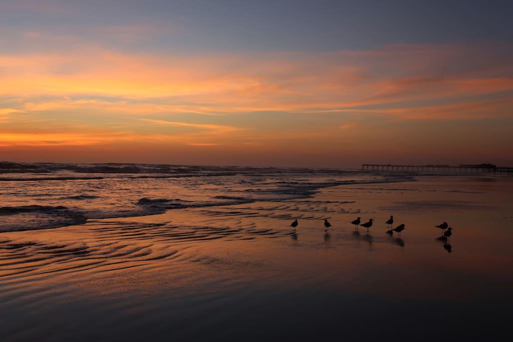 Daytona Beach Shores Condominiums