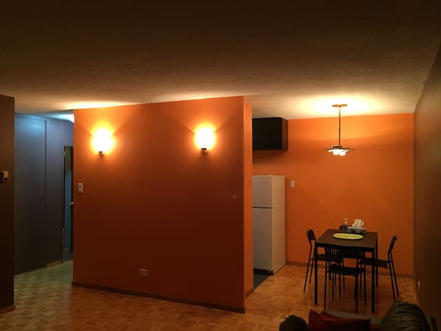 Downtown one bedroom Condo - Winnipeg - Appartement