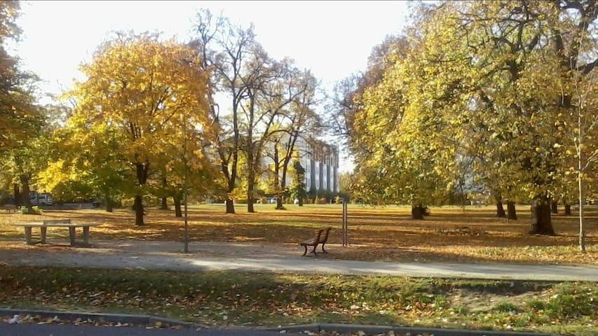 Pavillon mit Blick ins Grüne & Fahrrad inklusive!