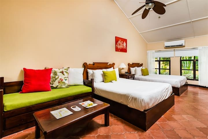 Bahia del Sol Beach Front Boutique Hotel Standard Room, 2 Queen Beds