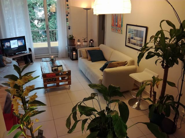Sunny appartment in Carry-le-Rouet - Carry-le-Rouet - Daire