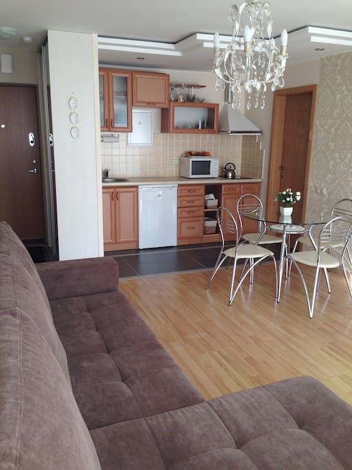 Living room with the kitchen pullout sofa