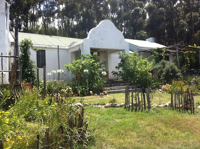 Country Home in a bluegum forest - Napier - Dom