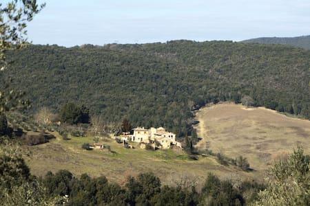 Ollie's house - San Gimignano - House