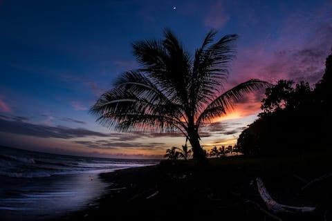 Casa Luna Negra - Entire Beachfront Home
