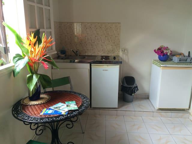 Studio rez de jardin tout équipé - Baillif - Appartement