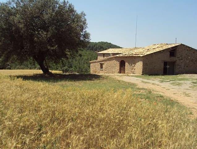 Masia l'Arà - La Baronia de Rialb - House