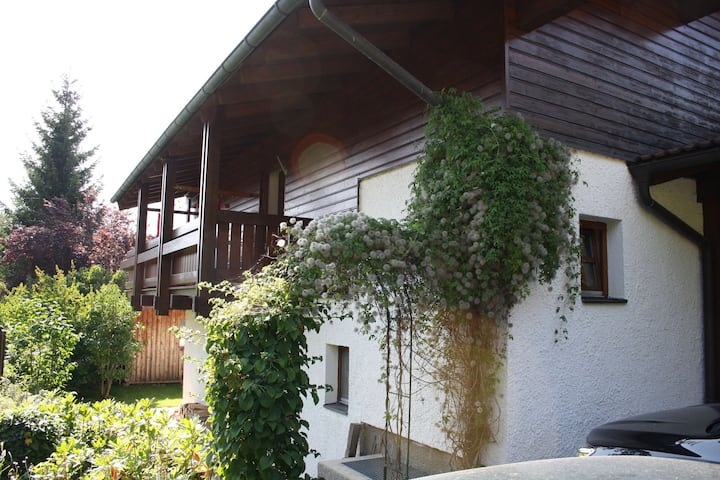 Spacious Villa near Lake in Goldegg