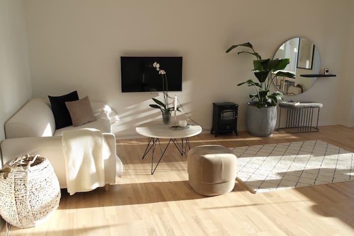Amazing apartment 15 mins from central Copenhagen