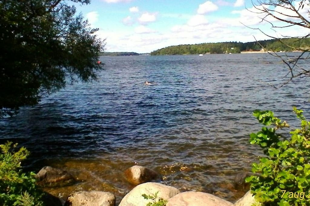 Swim and walk by Lake Mälaren, only 5 minutes walk from the room.