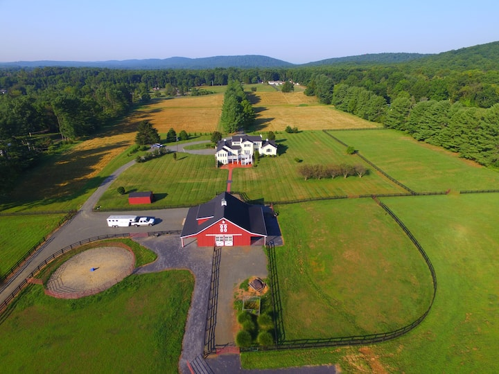 Charmingly...a Luxurious Equestrian Estate
