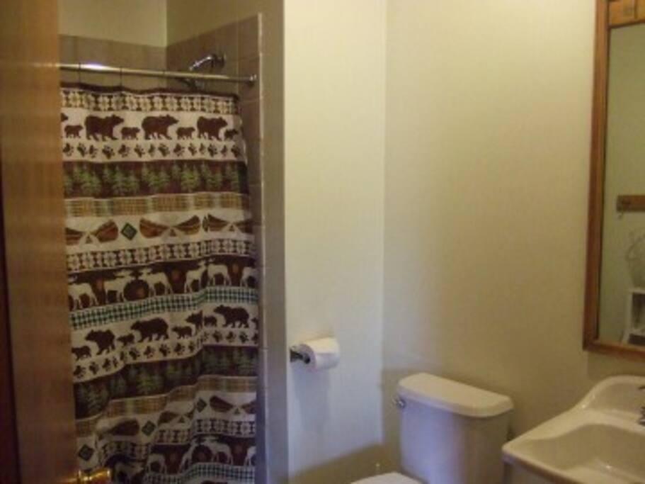 Walk/wheel in shower.  Cedar Cabin .