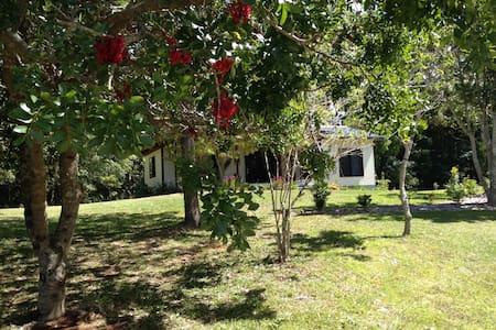 Long Cottage -  Byron Bay / Bangalow farm cottage - Bangalow - Domek gościnny