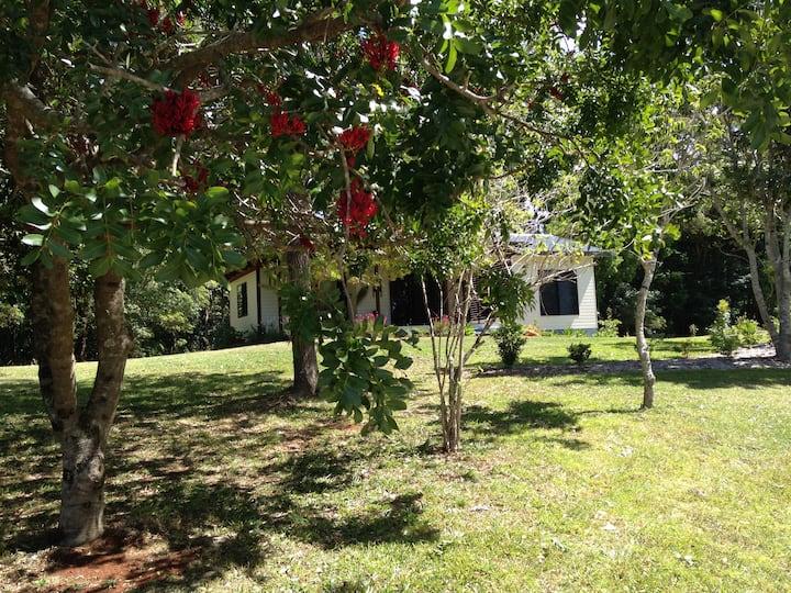 Long Cottage -  Byron Bay / Bangalow farm cottage