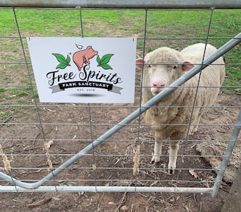 Free Spirits Vegan Farm Sanctuary