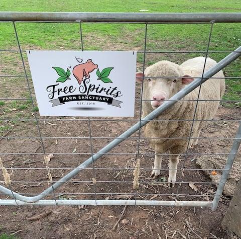 Free Spirits Vegan Farm Sanctuary