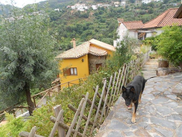Casa na praia fluvial do Mondego em Coimbra
