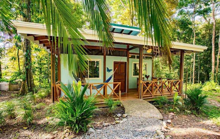 Beach and Jungle Paradise - Relaxing B&B