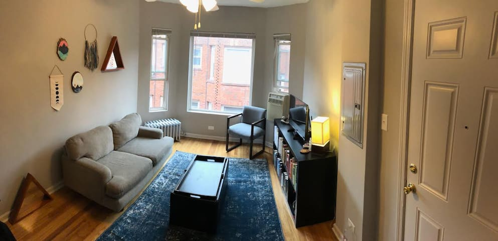 ENTIRE Sunny Andersonville 1 Bed to Yourself!