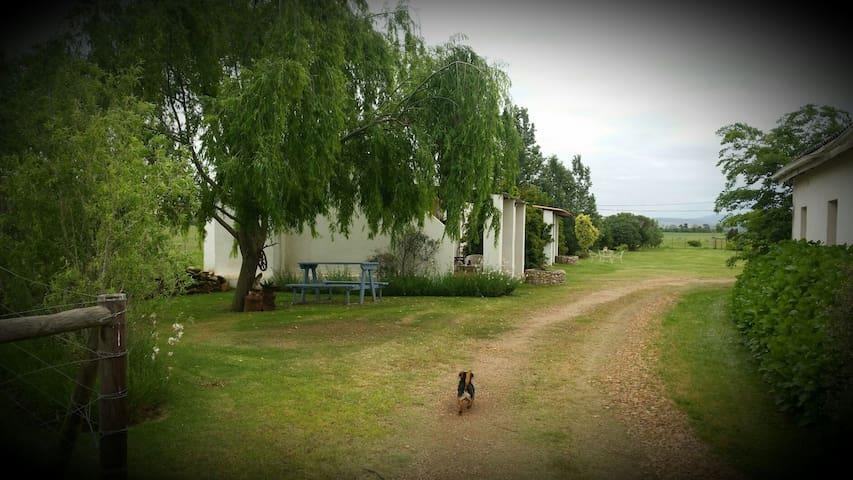 Cottage nr 3