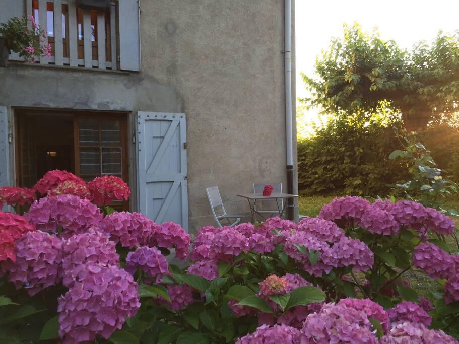 Entre de l'appartement (avec petite terrasse)