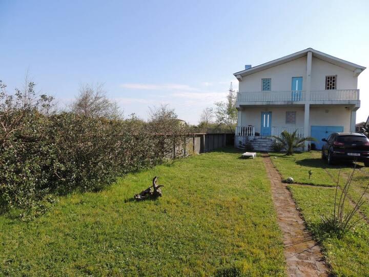Black Sea Guesthouse Jibo