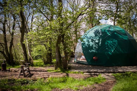 Oak Dome - Cosy Under Canvas