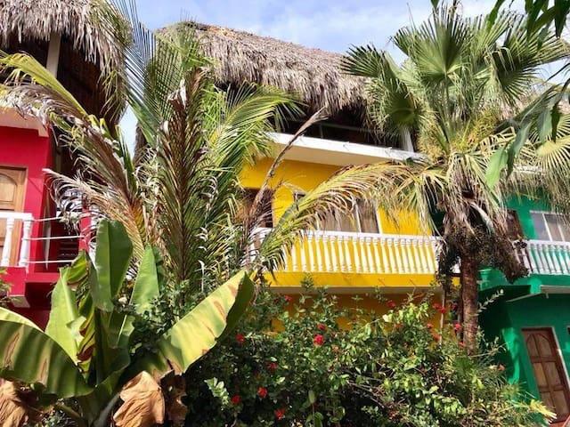 Rastaman Refuge  Yellow Condominium