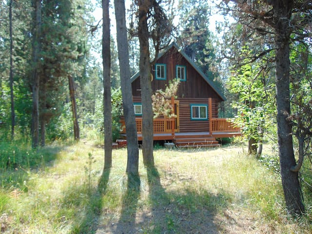Buffalo River Retreat is a cute cabin nestled in the trees.
