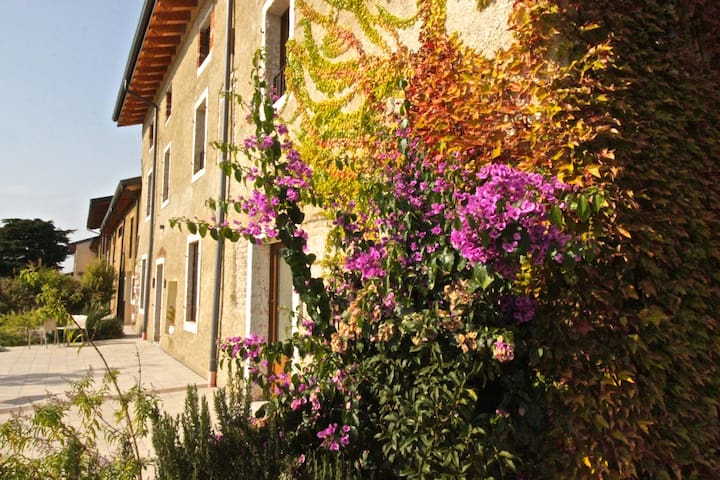 Lovely apartment in a Ancient Farmhouse - Gigia