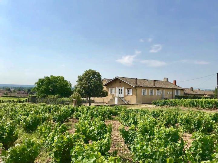 Gîte de Chêne Haut au cœur du vignoble beaujolais