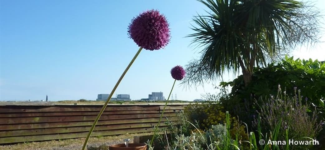 The Watch Tower, Dungeness - Dungeness - Bed & Breakfast